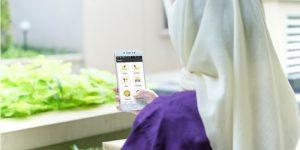 Absensi Karyawan Semakin Mudah dengan Aplikasi Hadirr | Gadjian